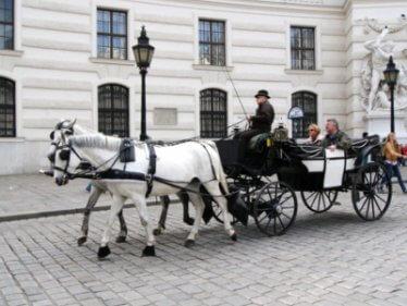 viennese fiaker polutan taxi